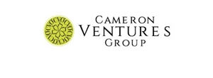 CAMERON VENTURES GROUP LTD