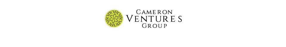 Logo for CAMERON VENTURES GROUP LTD