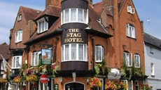 Picture of Stag Hotel