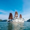 Bhaya Halong Cruises Tuan Chau Marina Port Ha Long