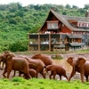 The Ark Lodge Aberdare National Park Nyeri