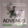 Advenus Hotel Shyretska 36 Lviv