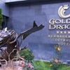 Golden Dragon Elebaev Street 60 Bishkek
