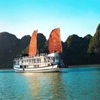 Ha Long Apricot Cruise Tuan Chau Wharf Ha Long
