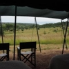 Wilderness Camp Mara Naboisho Conservancy Naboisho