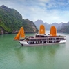 Peony Cruise Managed by Orchid Cruise Got Ferry Terminal, Ha Long, Ha Long, Vietnam Ha Long