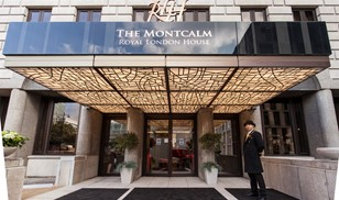 Picture of Montcalm Royal London House